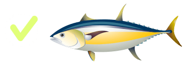 Tuna yellow